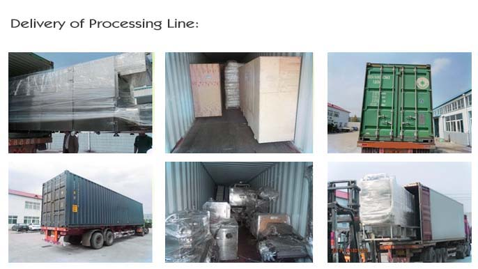 delivery of food extruder processing line 6648
