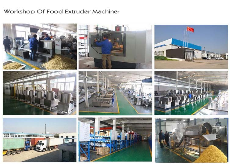 workshop of food extruder machine
